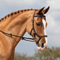 Micklem Competition Bridle - Snaffle Bridle from SmartPak Equine