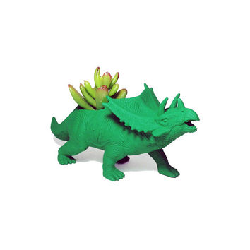 Up-cycled Green Triceratops Planter