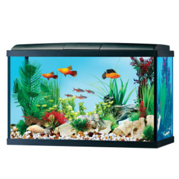 Top Fin® 15 Gallon Aquarium Starter Kit