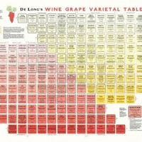 True Fabrications DeLong's Wine Grape Varietal Table Poster - The Periodic Table of Wine Grape Varietals