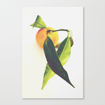 Tangerine Canvas Print by ARTbyJWP
