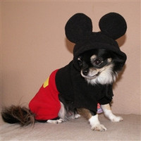 Boy Mouse Costume