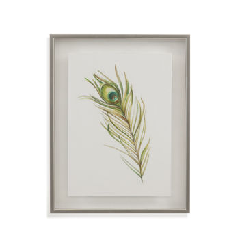 Bassett Mirror Watercolor Peacock Feather I Framed Art [9900-853AEC]