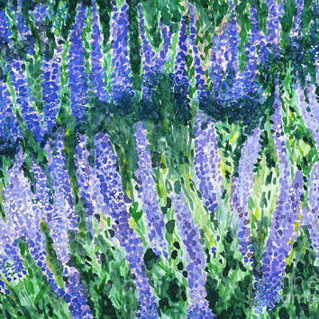 Russian Sage Painting by Amy-Elyse Neer - Russian Sage Fine Art Prints and Posters for Sale