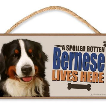 "Bernese Mountain Dog ""A Spoiled Rotten Bernese Lives Here"" Dog Sign v3 featuring the art of Scott Rogers w/ Bonus Novelty Man's Best Friend 9 Dollar Bill"