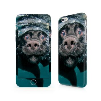 Labrador iPhone 6/6 Plus Skin