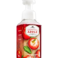 Gentle Foaming Hand Soap Farmstand Apple