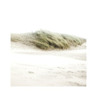 Coastal photography - Sea art - Sea Photography - Fine art - Dunes - Wind - Home decor - Wall decor- Green