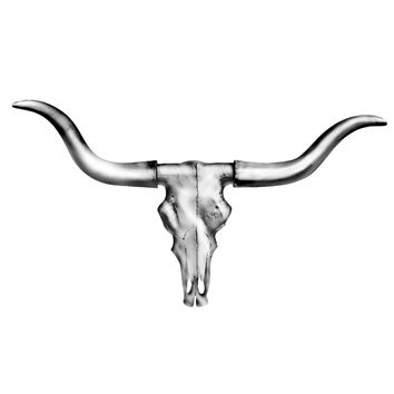 The Austin | Mini Longhorn Cow Skull | Faux Taxidermy | Silver Resin