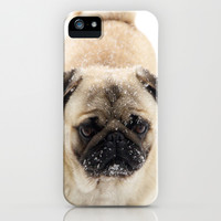 Snow Pug iPhone & iPod Case by Veronica Ventress