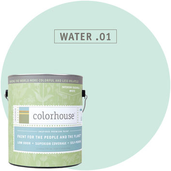 Paint by Colorhouse WATER .01
