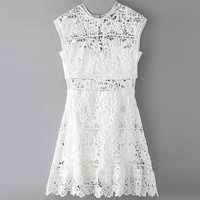 Sleeveless Lace Cut Out A-Line Mini Dress