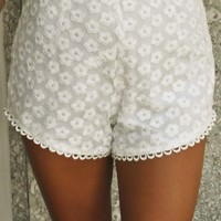 Darling In Daisy Shorts: White