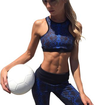 Newest Women's Sports Suits Yoga Set Sports Wear Activewear For Women Sexy Sport Suit Fitness Clothing Sets Womens Gym Clothes
