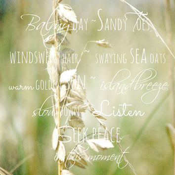 Inspirational Quote Art Print - Beach Photography of Sea Oats - Neutral Colors, Tan, Green - Zen Home Decor - Seek Peace
