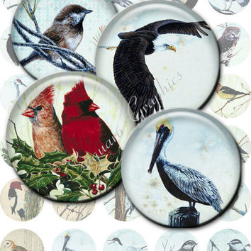 BIRDS - 1.5 inch - SG-48 - Printable Digital Artwork for Pendants, Bottle Caps, Jewelry Makers, Magnets, Stickers, Arts & Crafts