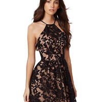 Halter Neckline Skater Dress with Black Floral Lace Detail