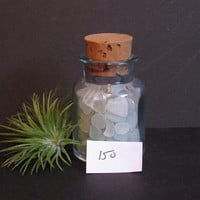 Bottled Lot of Sea Glass, Beach Glass, Frosted Clear / White / Pale Blue
