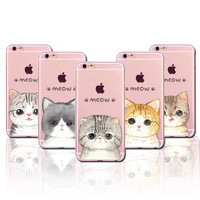 Clearance 70% off Adorable Kitten iPhone Cases