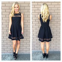 Black Sheer Skater Sleeveless Dress