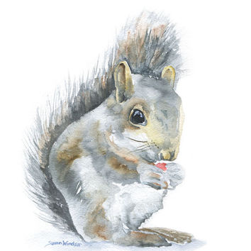 Squirrel Watercolor Painting 5 x 7 Fine Art Giclee Reproduction