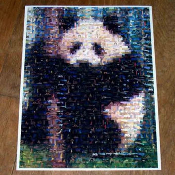 Amazing PANDA Bear Wild Animals Montage