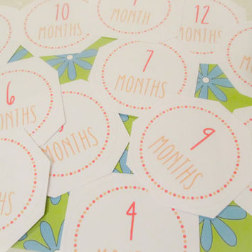 Baby Girl Monthly Stickers