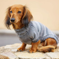 Dog sweater Doxie Clothes Dachshund Sweater Dog Clothes Dog coat Dog Jacket Sweater Clothes for pets Dog pullover Dog outfit Pet accessories