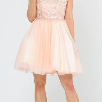 V-Neck Embroidered Blush Homecoming Short Dress