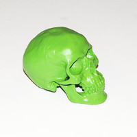 The Thatcher -  Apple Green Faux Human Head - Resin Skeleton - Sugar Skull Like