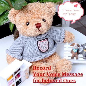 Record&Speak Talking Teddy Bear with 30 Second Audio Memory Storage Personalized Plush Stuffed Toy Baby & Growups Playmate