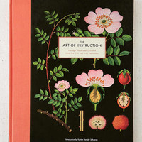 The Art Of Instruction: Vintage Educational Charts From The 19th And 20th Centuries By Katrien Van der Schueren - Urban Outfitters
