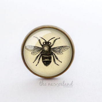 Insect ring / stud earrings, steampunk goth jewelry for Halloween by The Neverland