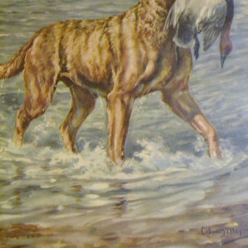 Vintage Lithograph Edwin Megargee Chesapeake Bay Retriever Framed Behind Glass Vintage Art PanchosPorch