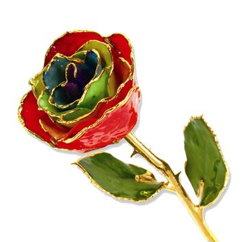 Lacquer Dipped Gold Trim Gypsy Rainbow Rose