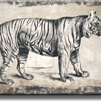 Vintage Tiger Picture on Acrylic , Wall Art Décor, Ready to Hang
