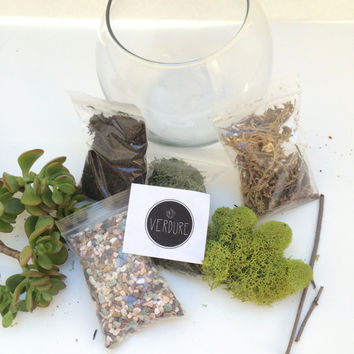 Makerskit Diy Air Plant Terrarium Kit From Urban Outfitters