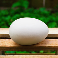 "Smooth Egg 3"" Ready to Paint Pottery Ceramic Bisque"