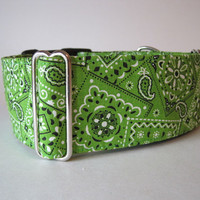 Lime Martingale Collar Bandana Martingale Collar by HuggableHound