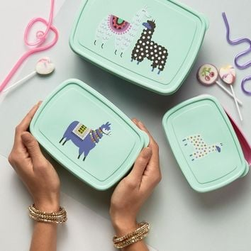 Paperchase Llama Snack Boxes at asos.com