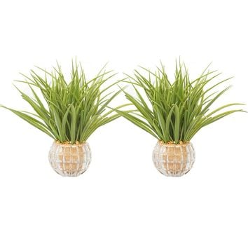"""Set of 2 13"""" Tall Plastic Grass Artificial Indoor/ Outdoor Faux Décor in Glass Vases"""