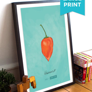 Habanero Chili Pepper Kitchen Giclee Art Large Print on Satin or Cotton Canvas Mexican Rustic Wall Decor