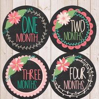 ON SALE Monthly Baby Gift Baby Girl Baby Monthly Stickers Month Baby Sticker Monthly Milestone Stickers Baby Month Stickers