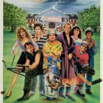 CADDYSHACK II movie poster HILARIOUS COMEDY chevy chase dyan cannon 24X36