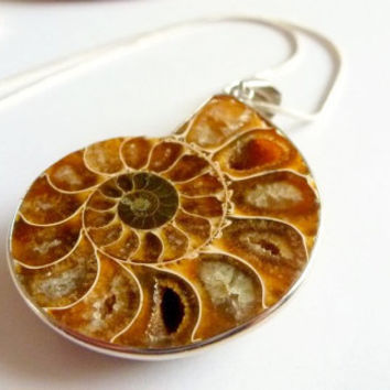 Fossilized  Natural Ammonite Stone  Necklace Golden Caramel Nautilus Pendant Unique Unisex Jewellery