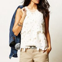 Layered Lace Tank by Dolce Vita Ivory Xs Tops