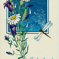 Dragonfly and Flowers  - Russian Vintage Postcard USSR Unused