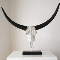 Buffalo Skull, Skull, Animal Skull, Office Decor, Longhorn, Skull on Stand, Skull Decor, Skull Sculpture, Skull Australia, Hodi Home Decor