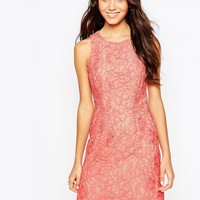 Oasis Pretty Vintage Lace Skater Dress
