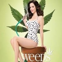 Weeds The Buzz Is Back Marijuana TV Poster 24 x 36 inches